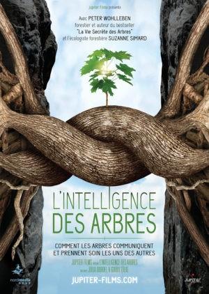Julia Dordel et Guido Tölke, L'Intelligence des arbres (affiche)