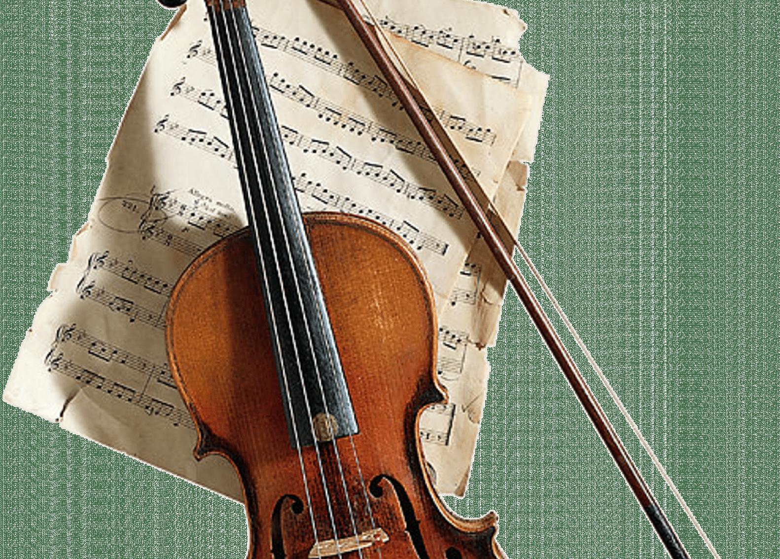 Les troubles musculo-squelettiques des violonistes et altistes
