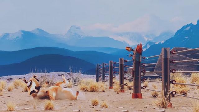 Les amusants déboires d'un pauvre lama argentin