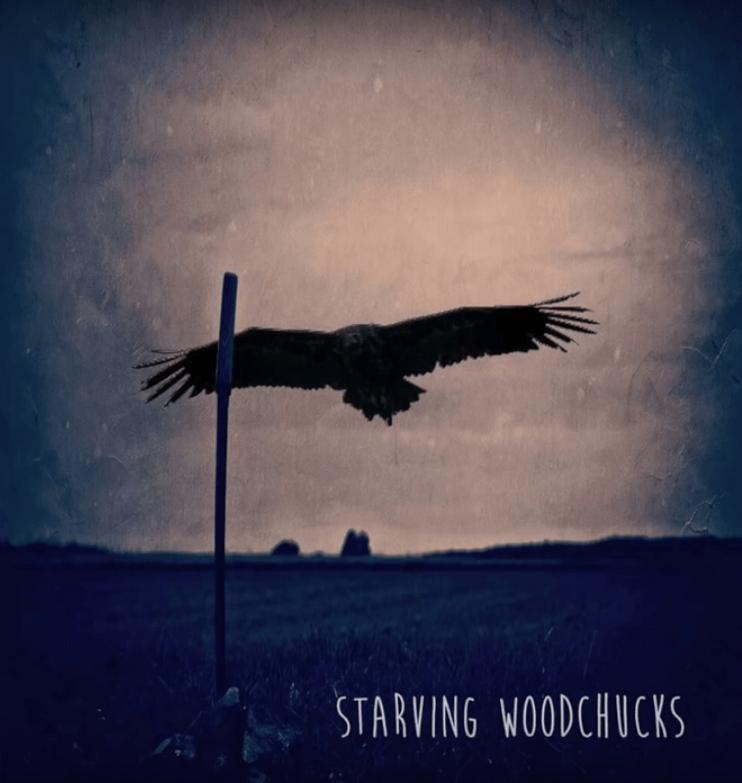 Starving Woodchucks : le nouveau son pop-folk français à l'influence américaine marquée