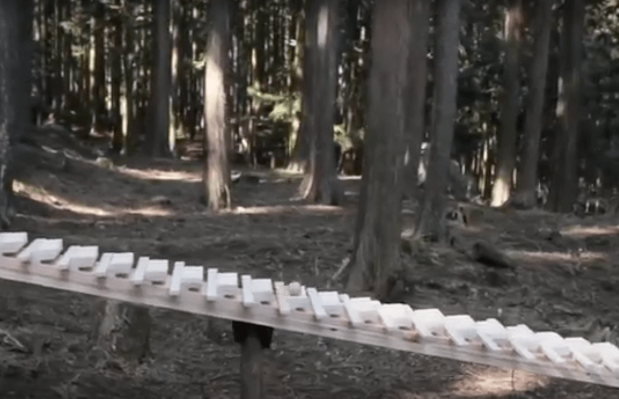 [Vidéo] Belle installation de land art musical : «Que ma joie demeure»