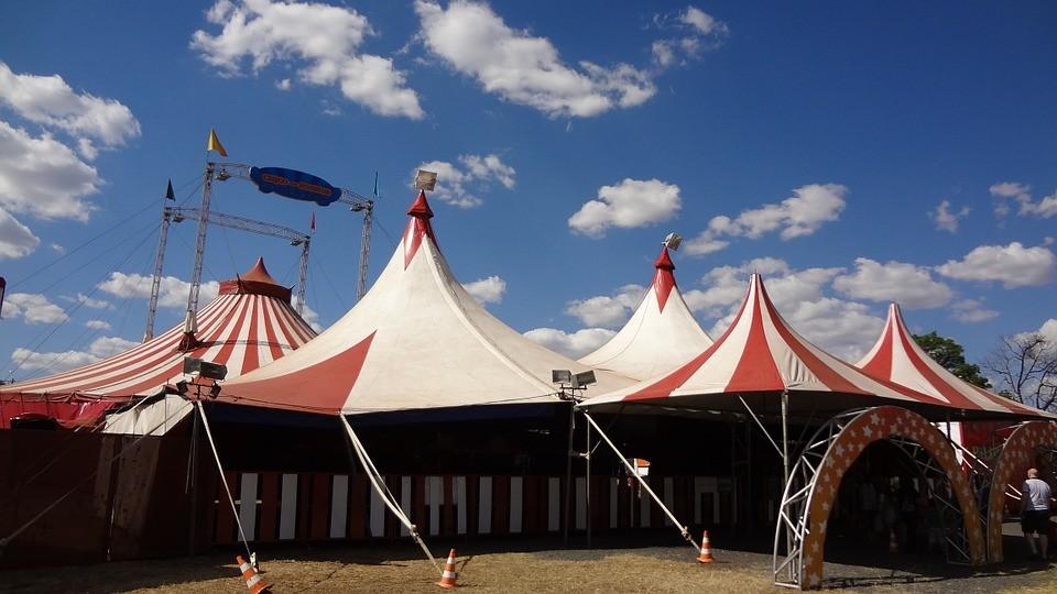 L'État à la rescousse des arts du cirque : un milieu artistique sur le qui-vive