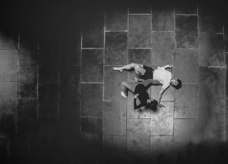 Danse Dense : Appel à projet pour les compagnies professionnelles de danse contemporaine
