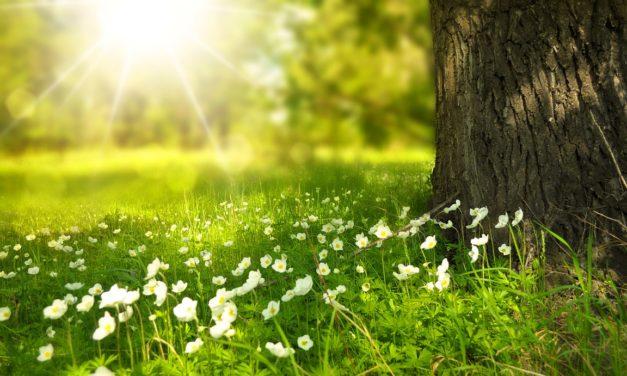 6 septembre 1815 : fin d'été et… chant de printemps