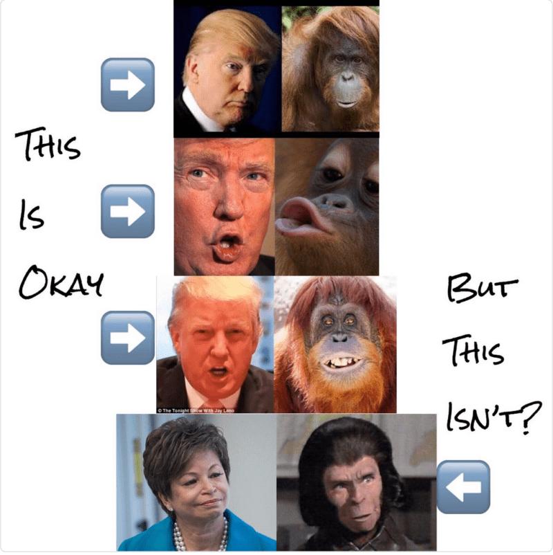Donald Trump Valerie Jarrett singe racisme