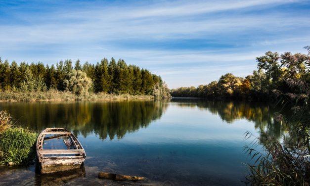 28 mai 1867 : les tribulations d'un beau Danube ignoré puis acclamé