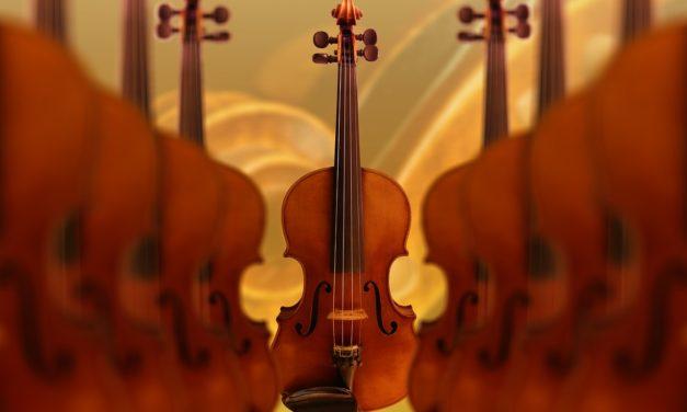 19 octobre 1905 : Sibelius dans les cordes, mais pas dans les choux