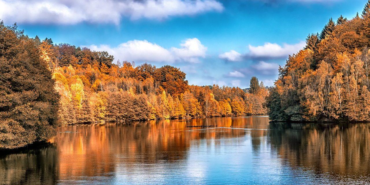 12 novembre 1824 : une sonate de Schubert pour l'automne
