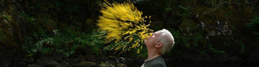 Thomas Riedelsheimer, Penché dans le vent, avec Andy Goldsworthy