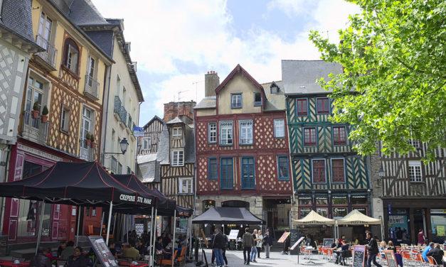 Rennes – L'âge de la tortue recrute un chargé de communication et de création graphique (h/f)