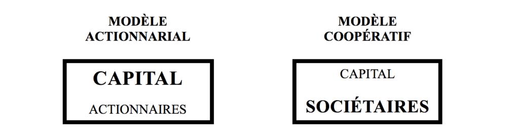 Modèle actionnarial et modèle coopératif - graphique ESS