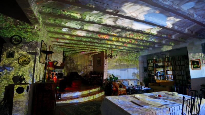 07_ZAR_1099_zolty Claude Martin-Rainaud La maison de Martine envahie par le jardin