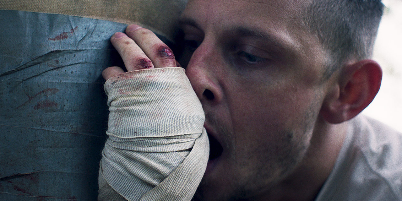 """Donnybrook"" de Tim Sutton: une violence brute"