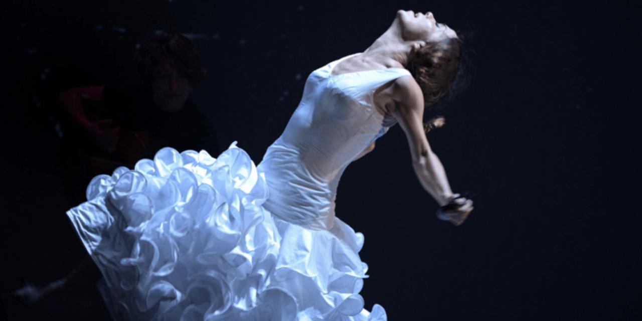 Coronavirus : le festival Arte Flamenco déclare forfait