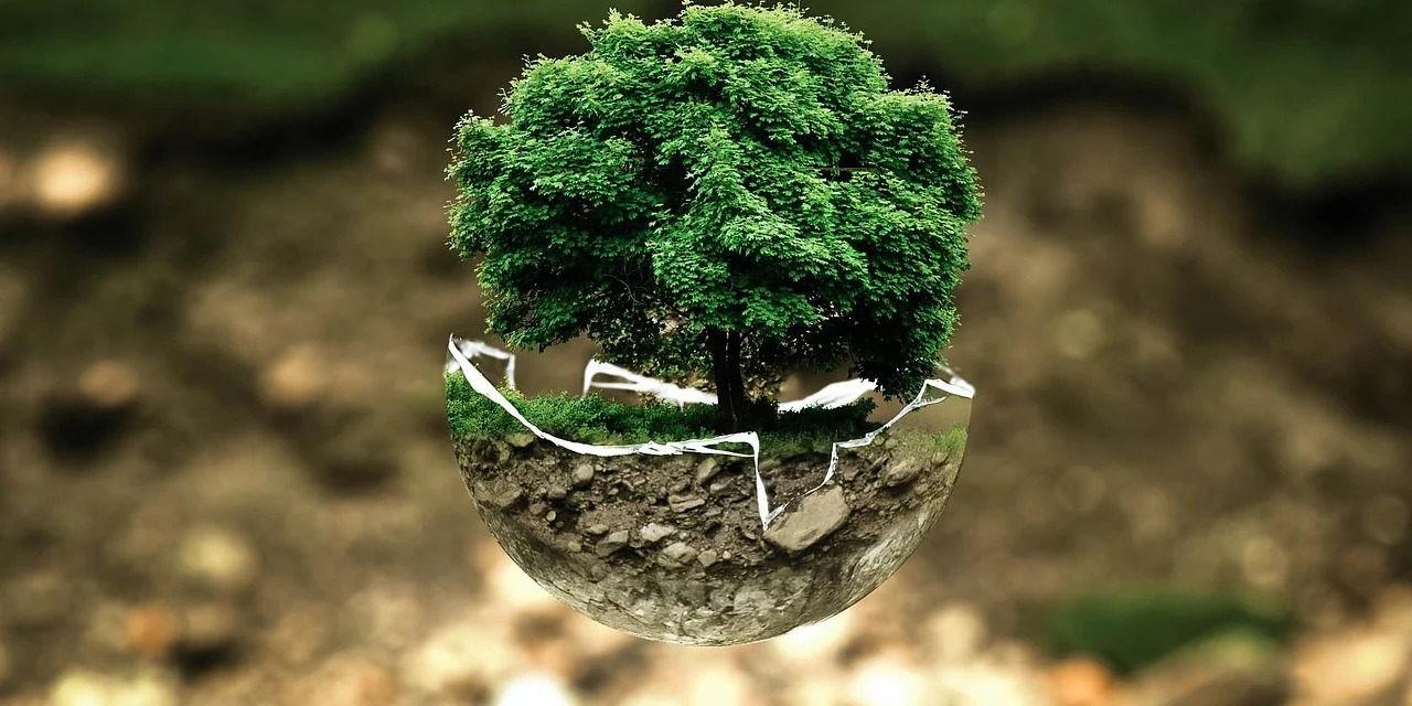 Les Verts et la culture: menace ou espoir?