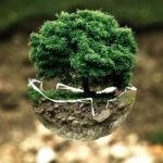 La place essentielle de la culture dans les transitions écologique, sociale et démocratique (2/2)