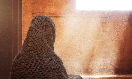 Islamisme: laissons Lale Gül vivre au nom des droits culturels!