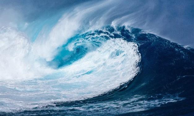 13 mai 1877 : Franck se laisse porter par la vague en vogue